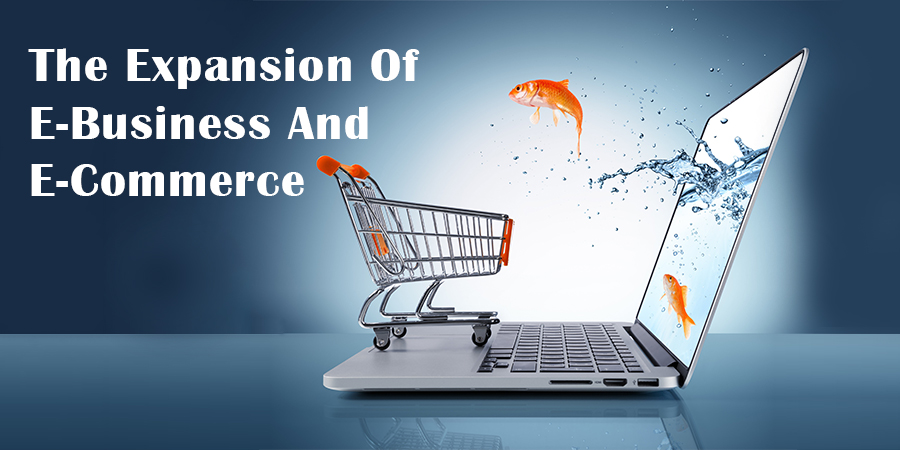 The Expansion of eBusiness and eCommerce