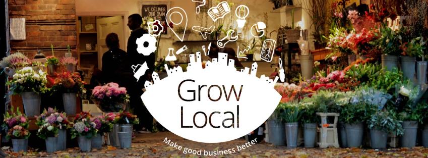 Google grow local