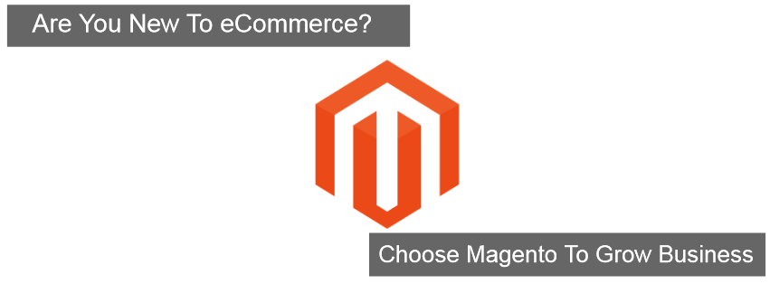 magnto ecommerce for begginers